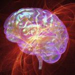 La musique modifie notre cerveau